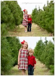 ordinary christmas tree farm austin part 3 where to cut your