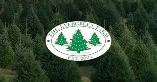 the evergreen farm christmas tree farm lebanon nj