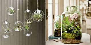 indoor plant display new ways to display plants indoors some great options for