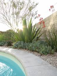 Landscaping Around Pools by The 25 Best Pool Landscaping Ideas On Pinterest Backyard Pool