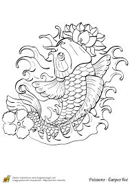 coloriage magnifique poisson carpe koi sur hugolescargot com
