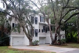 Low Country Style Untangling Spanish Moss Hortitopia