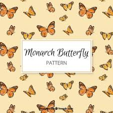 monarch butterfly vectors photos and psd files free