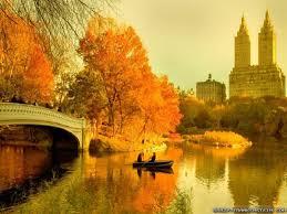autumn in nyc wallpaper 1024x768 135 63 kb