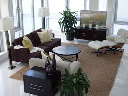 Apartment Awesome Decoration In Living Room Apartment With White by Gorgeous Apartment Decorating Ideas For Men With Cool Ajara Decor