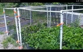 vegetable garden fence ideas how to fence your raised bed garden using pvc youtube
