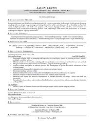 Software Developer Resume Examples by Information Technology Resume Examples