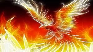 phoenix bird wallpaper hd pixelstalk net