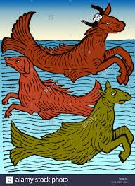 woodcut of three mythical sea creatures a sea cow sea dog and