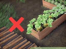 3 ways to keep animals out of your vegetable garden wikihow