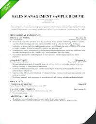 resume format sles sales program manager resume manager resume sle sales manager