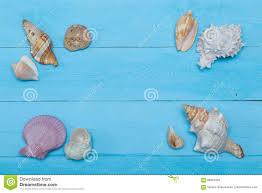 Assorted Seashells Assorted Seashells On Blue Wooden Background Flat Lay Copyspace
