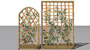 2 ivy trellis walls 3d model bush max c4d obj 3ds fbx lwo stl