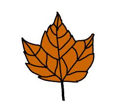maple leaf illustration free stock photo public domain pictures