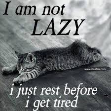 Tired Meme - i am not lazy i just rest before i get tired meme picture