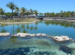 Where Is Port St Lucie Florida On The Map by The Top 10 Things To Do Near Club Med Sandpiper Bay Port Saint Lucie
