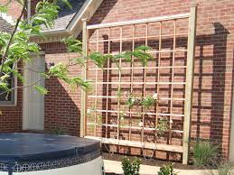 Trellis Landscaping How To Build A Sun Fighting Trellis Diy Network Diy Trellis And