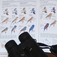 review kaufman field guide to advanced birding