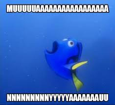 Dory Memes - bipolar memes thread page 4 forums at psych central
