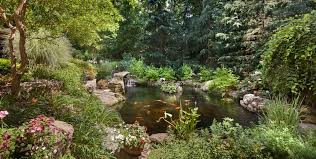 garden pond design tips surrounds landscape architecture