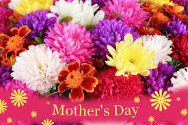 day flowers mothers day flowers background wallpaper