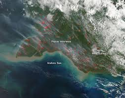 Wildfire Bc Map 2015 by Smoke And Fires Pepper Papua Indonesia And New Guinea Nasa