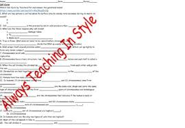 cell cycle worksheet video by always teaching in style tpt
