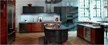 fresh black kitchen cabinets with stainless steel appliances
