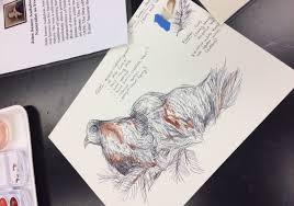 birds of a feather educators teach educators how to use mac u0027s new