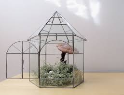 vintage greenhouse terrariums images reverse search