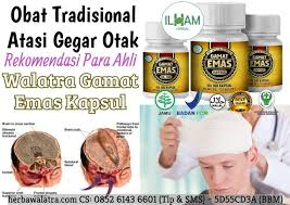 obat tradisional gegar otak 100 teraman herba walatra