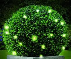 Light Up Topiary Balls - best 25 artificial topiary ideas on pinterest artificial hedges
