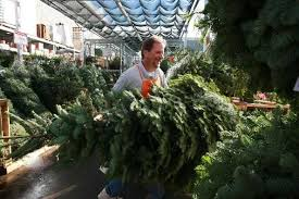 when do christmas trees get delivered to home depot the home