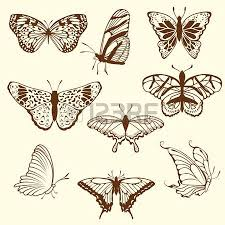 set of different sketch butterfly illustration for design use