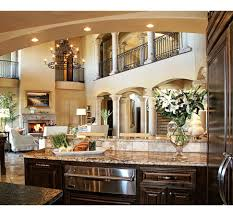 Traditional Kitchen Design Ideas Kitchen Luxury Black Kitchen Kitchen Design Ideas Modern Kitchen