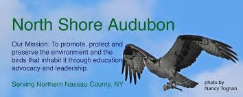 nj native plant society use native plants u2013 north shore audubon society