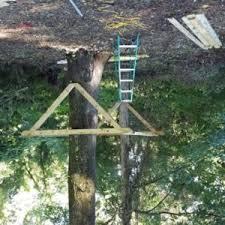 tree platform in new york tree houses by tree top builders