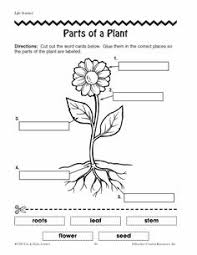 parts of a plant booklet free download reading writing