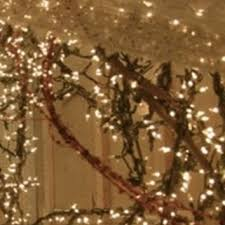 lit grapevine garland 15 foot with white from eclecticatticvintag