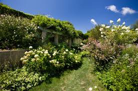 garden inside house what does the grey gardens house look like now vogue