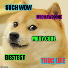 What Is Doge Meme - such wow much awesome doge meme picsmine