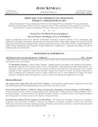 Sample Executive Resumes by Operation Executive Interview Questions Business Operations