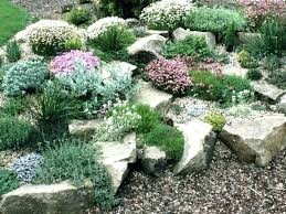 Rocks For Garden Edging Rock Garden Edging Noharm Club