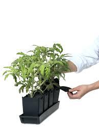 self watering indoor planters mulderranch com