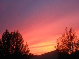 calendar peri mauer red sky for trumpet november 10 2013 2pm
