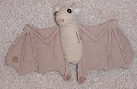 bats teaching theme activities u0026 lesson plan ideas little