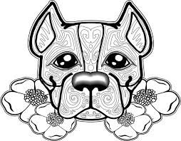 23 dog coloring pages images coloring books