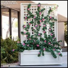 Trellis As Privacy Screen Rolling Planter With Trellis And Artificial Flowers Privacy