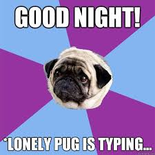Birthday Pug Meme - good night lonely pug is typing lonely pug quickmeme