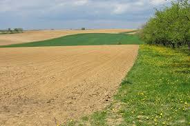zahlungsansprüche landwirtschaft zahlungsansprüche landwirtschaftskammer nordrhein westfalen
